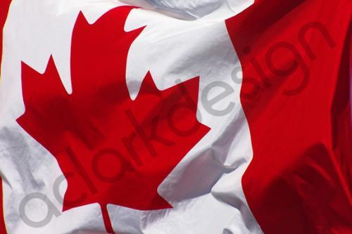 تباطؤ معدل التضخم الكندي خلال شهر أغسطس