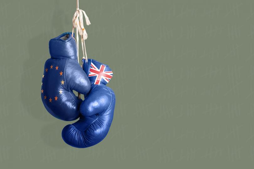 ما هو القادم بعد تحديد موعد الاستفتاء على بقاء/خروج بريطانيا من الاتحاد الأوروبي؟