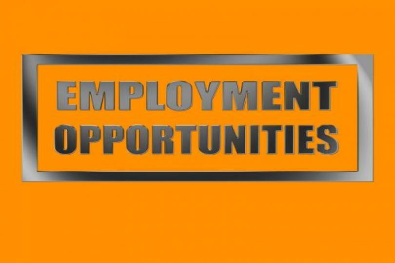 ارتفاع أعداد الوظائف الكندية وتراجع معدلات البطالة