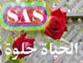 الصورة الرمزية Samir A
