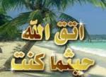 الصورة الرمزية khaled_1970