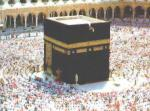 الصورة الرمزية متداول عربي صغير
