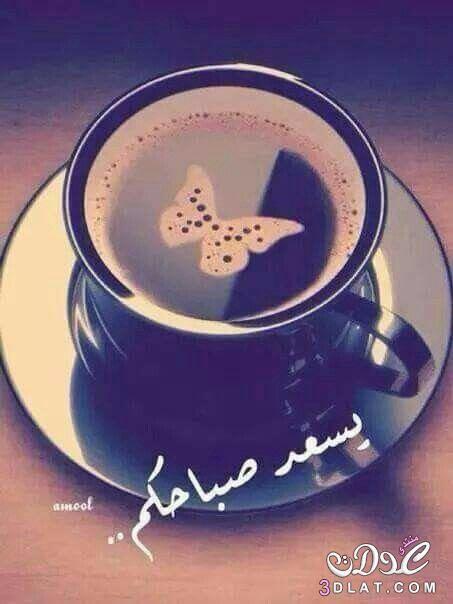 الصورة الرمزية AlHamoor