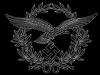 الصورة الرمزية Luftwaffe