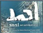 الصورة الرمزية احمد الفاضل